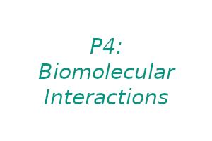 P4: Biomolecular interactions