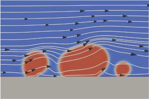 P9: Wetting phenomena