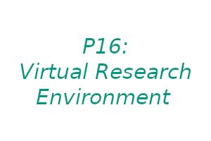 P16: Virtual Research Environment